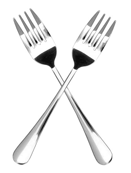 two piece stainless steel fork